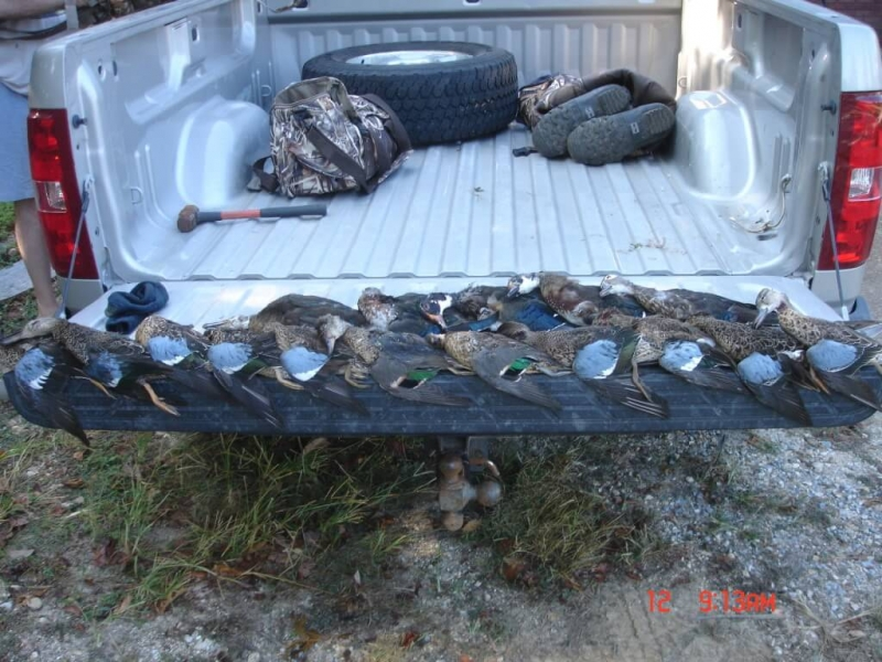 wodduckseason2011007