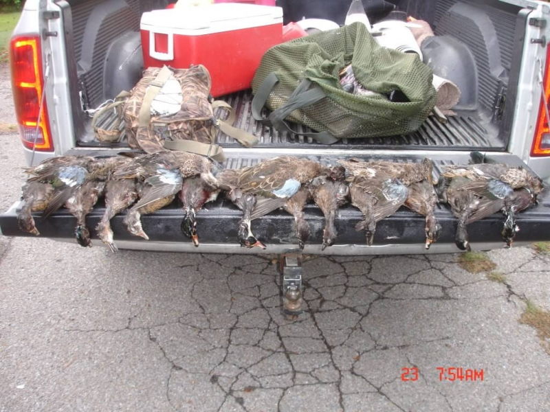 wodduckseason2011Ky001